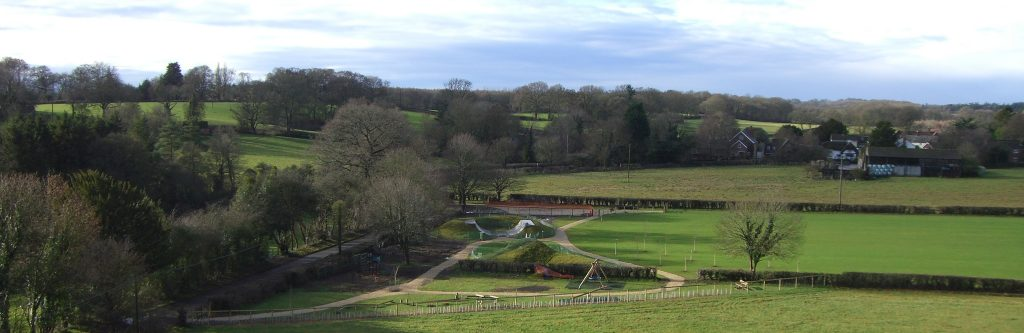 farley-fox-field-cropped