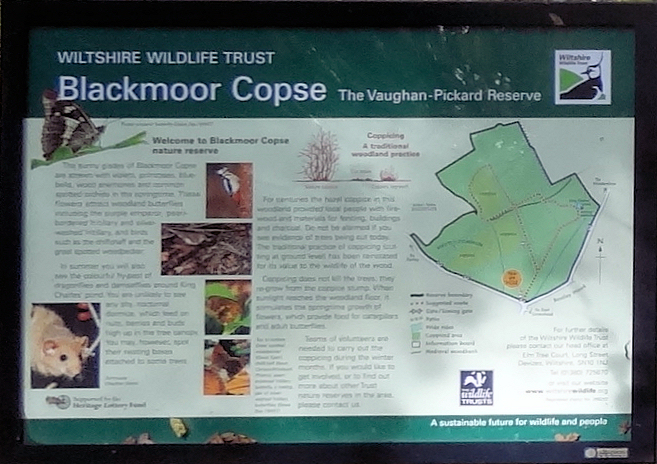 Blackmoor_Copse,_sign